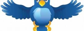 tweet landing